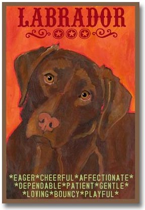 Labrador Retriever Gifts- Chocolate Lab Art Prints ...