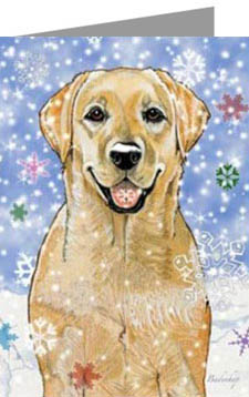 boxed labrador retriever christmas cards