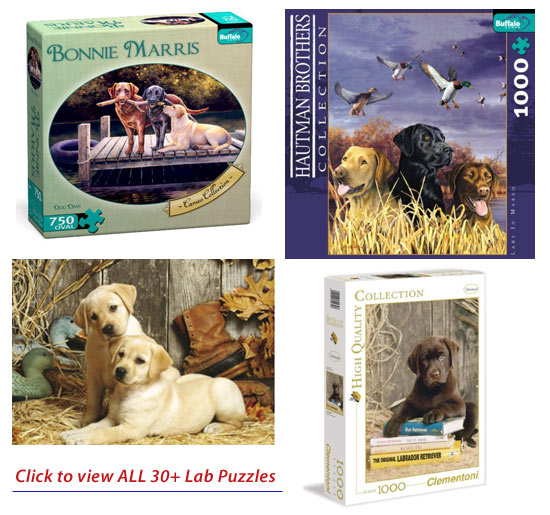 Labrador Retriever Gifts Com Plush Amp Stuffed Labradors